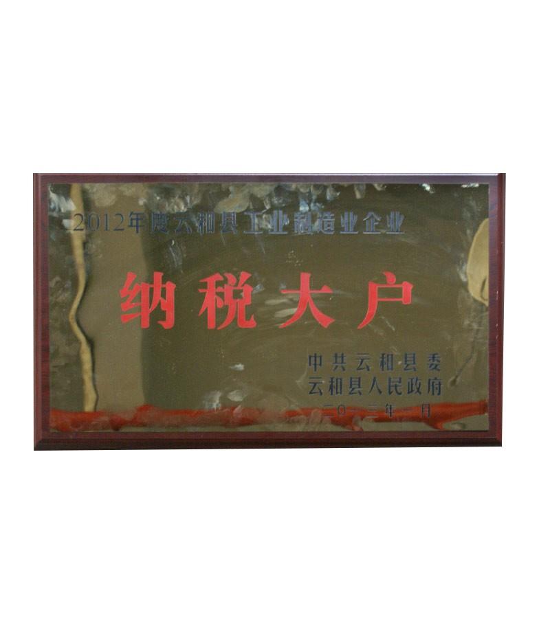 2012年度云和县工业制造业企业纳税大户